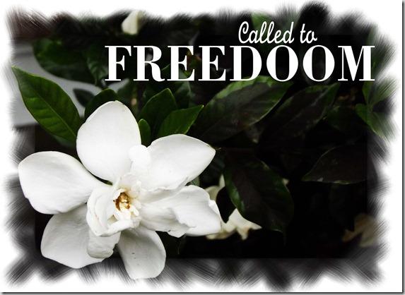Freedom CallsMe