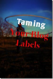 lasso_labels.png