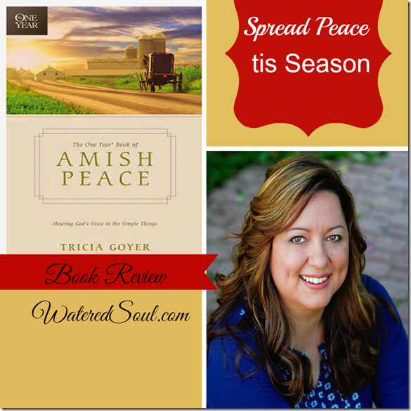 Amish Peace Book Review2